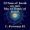 12 Sons